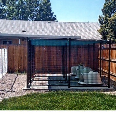 A shaded dog kennel in the corner of a yard