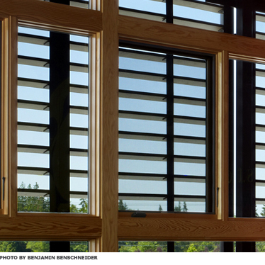 A window with adjustable blinds
