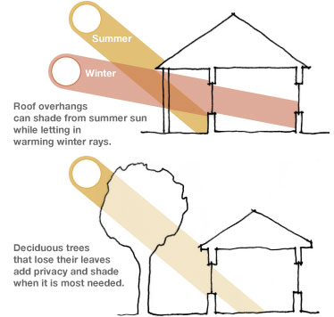 Diagram showing solar shading from trees and overhangs